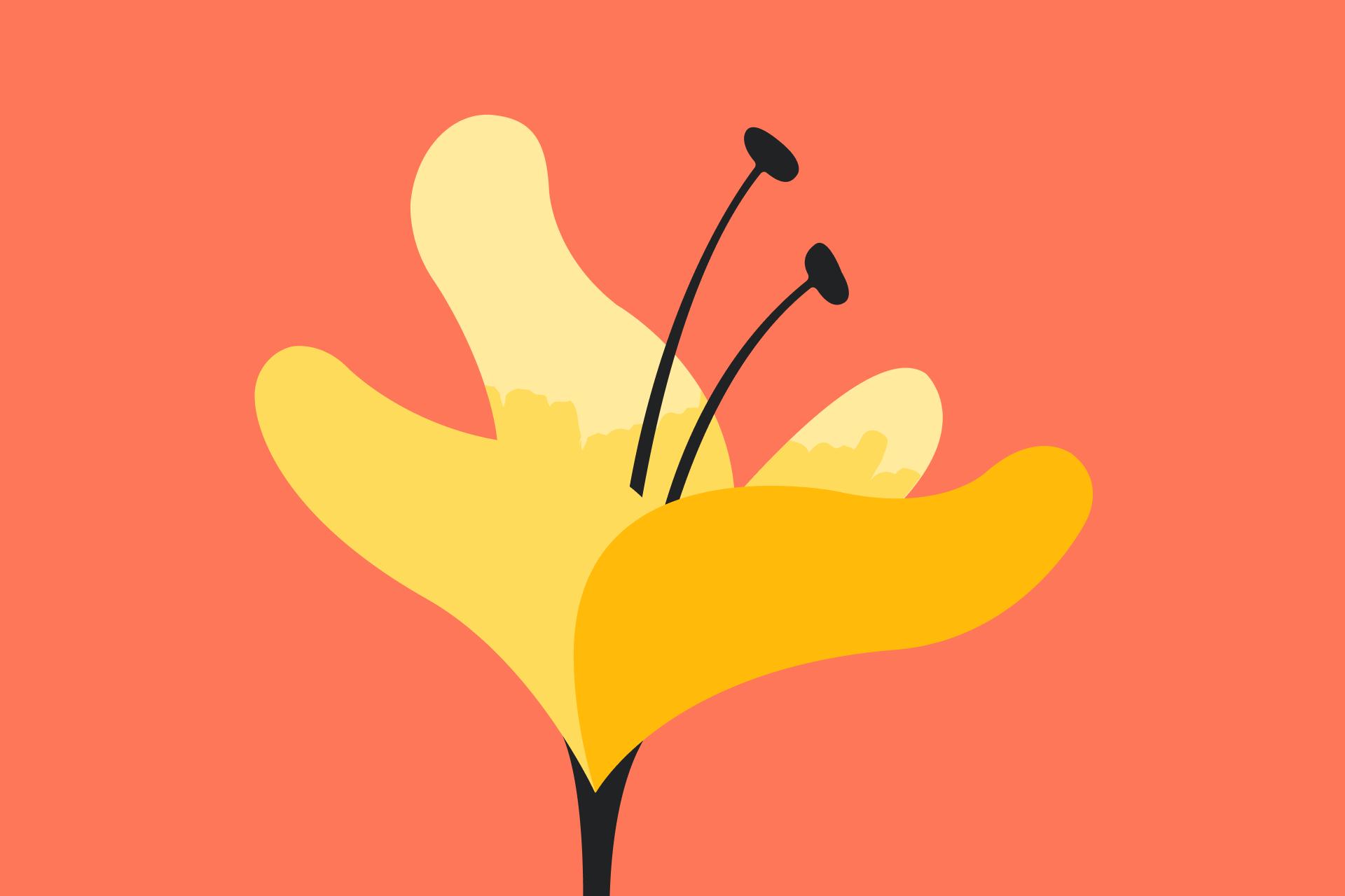 SE_fallcleaning_Flower-orange_3x2.png
